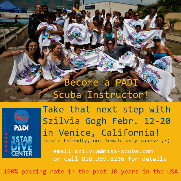 Miss Scuba: become a PADI scuba instructor with Szilvia Gogh